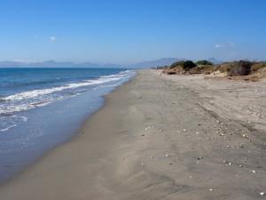 Cochorit beach